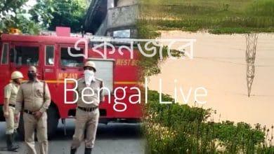 Photo of চোপড়ায় উদ্ধার মৃতদেহ, শিলিগুড়িতে দোকানে আগুন, এক নজরে আরও খবর