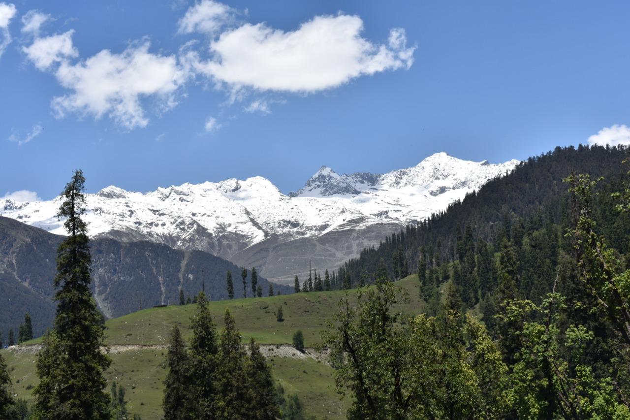 shimla and manali tour (1)