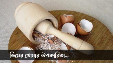 unique use of egg