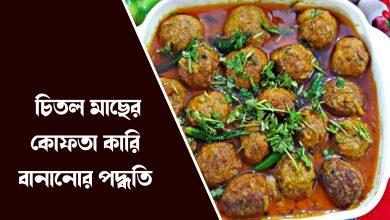 bangladesh special চিতল মাছের কোফতা কারি